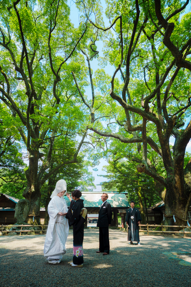 樹齢700年の楠が伊曽乃神社のご神木。挙式前の家族を森の精霊達がそっと見守ってくれる   愛媛県西条市の結婚式場ベルフォーレ西条